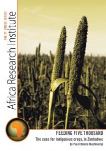 Zimbabwe, Africa, indigenous crops, millet, small grains, Paul Chidara Muchineripi